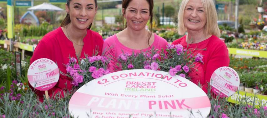 Laois gardeners urged to plant pink