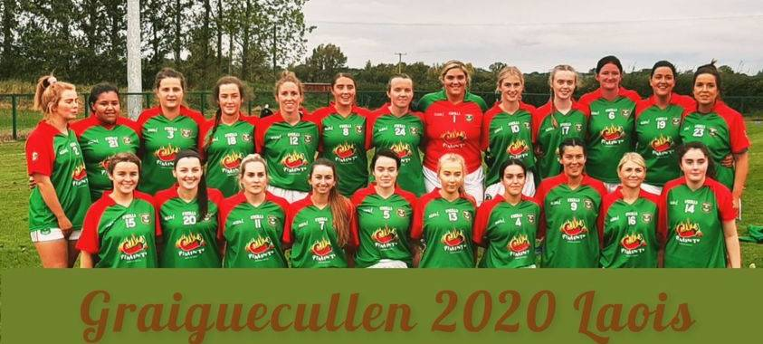 'From the Sideline': Graiguecullen crowned Junior Champions