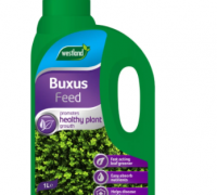 BUXUS FEED 1LTR