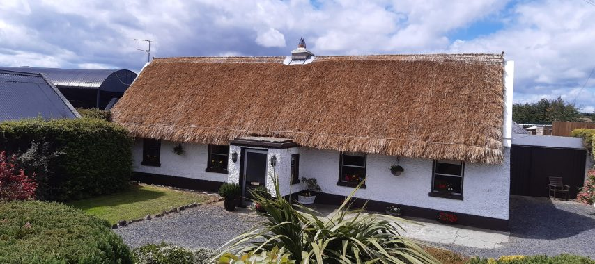 Latest Laois News: €100K for Laois Heritage and Conservation projects welcomed