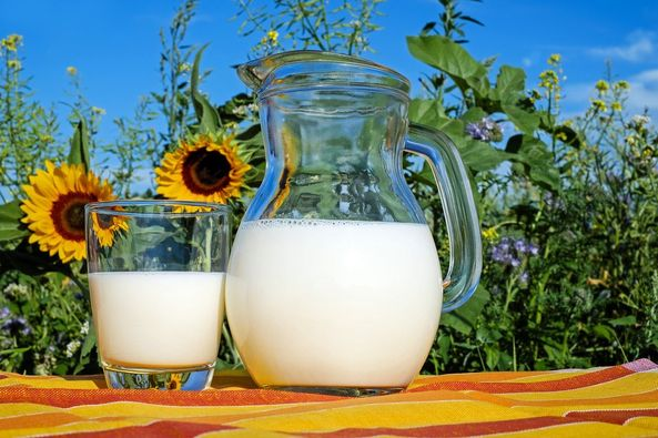 Photo of a glass and a jug of milk