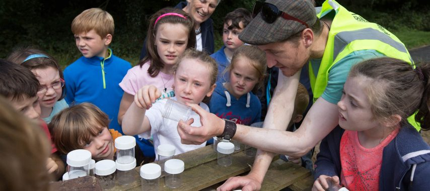Latest Laois Event: Cruinniú na nÓg – Be Connected with Nature