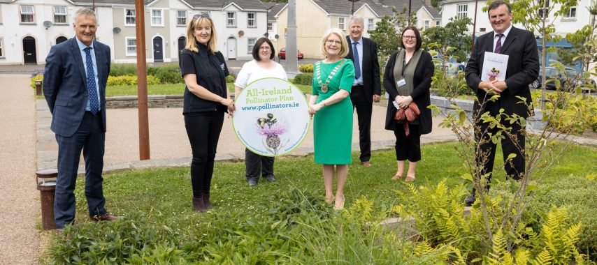 Latest Laois News: Laois County Council sign up as All Ireland Pollinator Plan partners