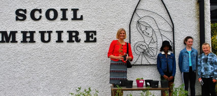 Latest Laois News: Local Minister's 'urgent action' call to repair Scoil Mhuire in Abbeyleix